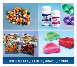 Shells, Food, Feeders, Gravel, Ponds