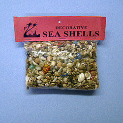 Small Sea Shell Gravel